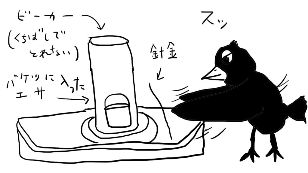 カラスの実験