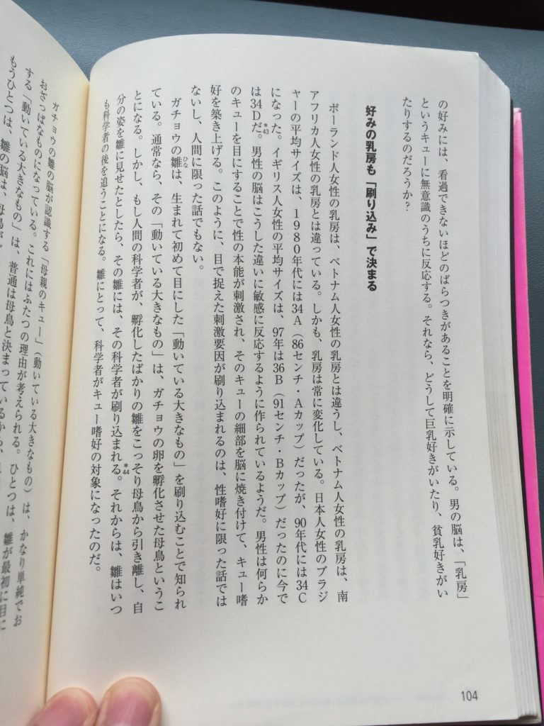 オーガス&ガタム104
