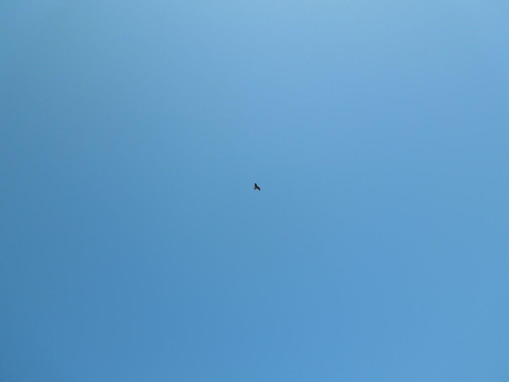 澄み渡る青い空、青い海、すべてが溶け合う素敵な空間、それが佐渡です。