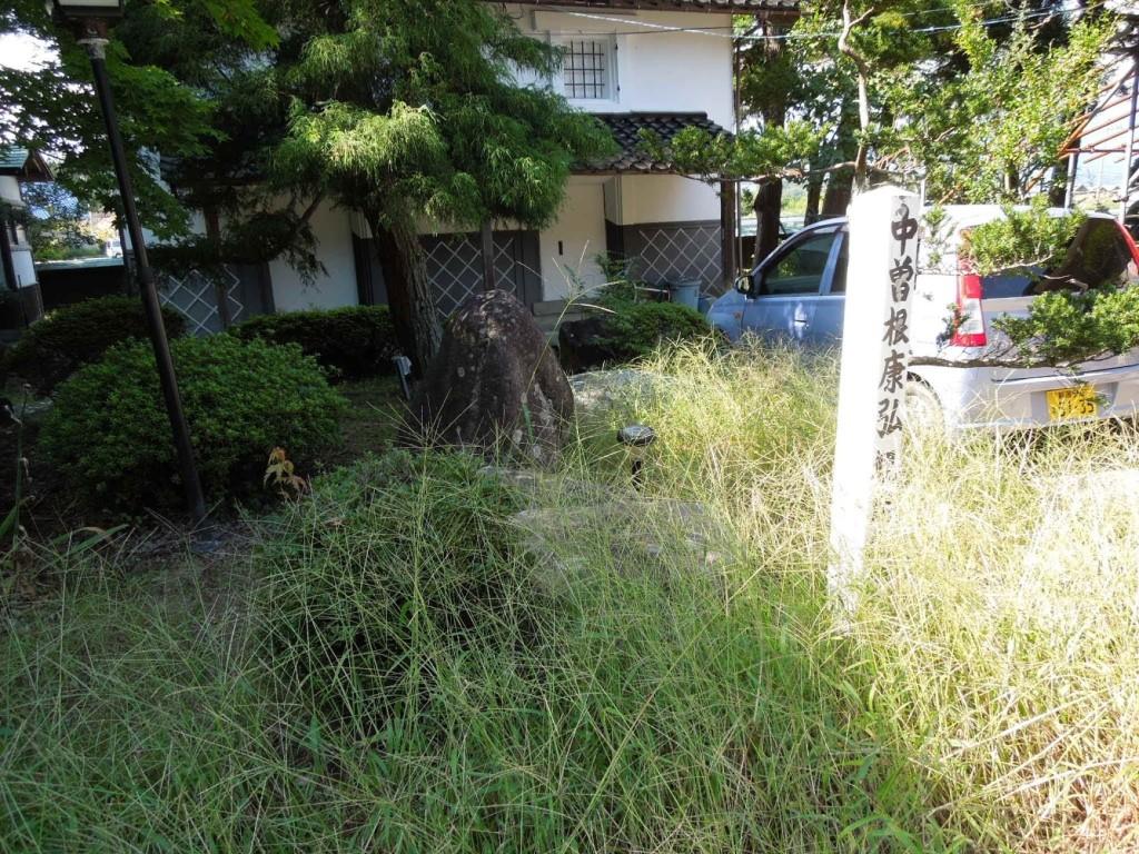 中曽根首相いらっしゃったのですね。人間たちの愚かな、美しい営みをこの大樹は見ています。